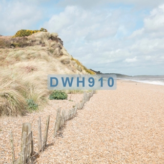 DWH910 - with tag